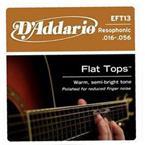 D'addario EFT13 Flat Top Resophonic