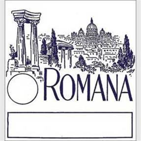 Romana Satz Saiten für Saz
