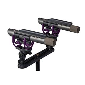 Aston Microphones Starlight Stereopaar