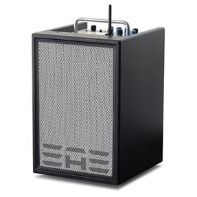 Elite Acoustics A4-8 Carbon Fiber Black