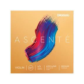 D'addario Violine Ascente