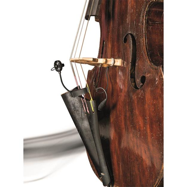 Prodipe CL21 Lanen Cello