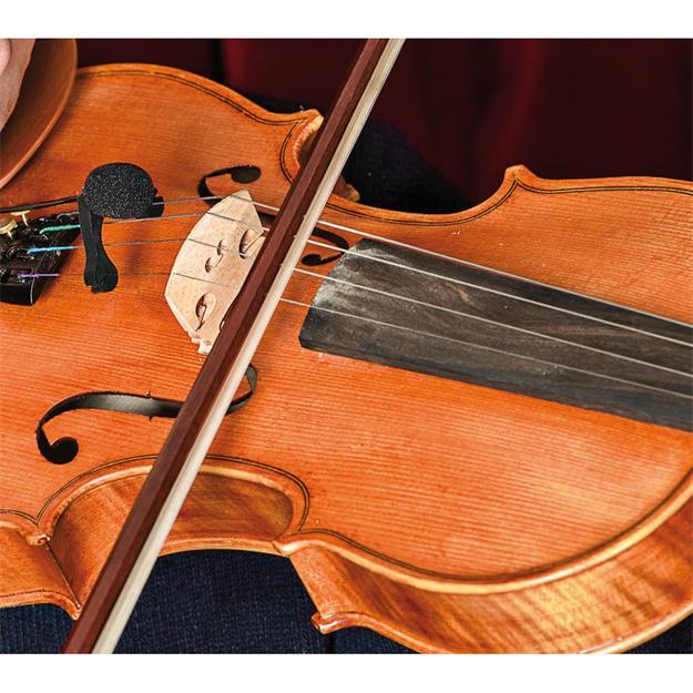 Prodipe VL21 Lanen Violin & Alto