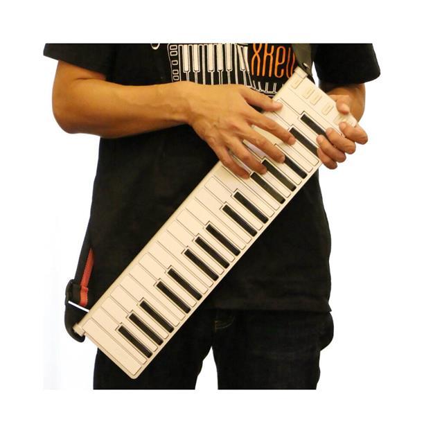 CME X-Clip Gitarren-Gurtpin-Leiste